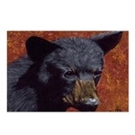 Brother bear: Postcards (Package of 8)