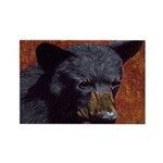 Brother bear: Rectangle Magnet (100 pack)