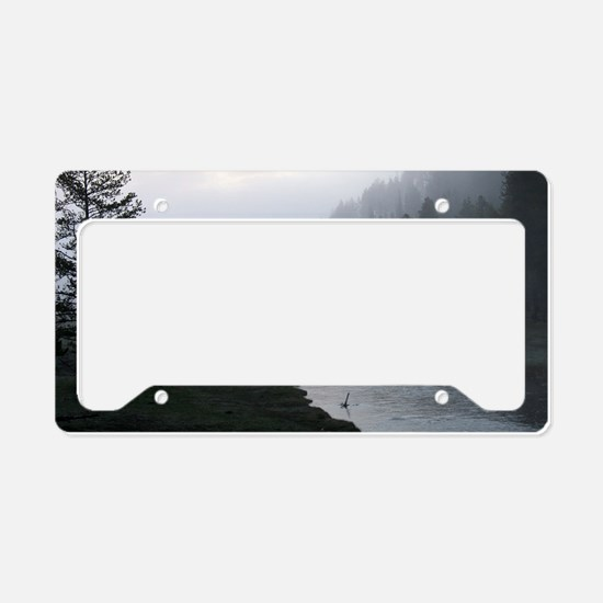 Bison crossing License Plate Holder