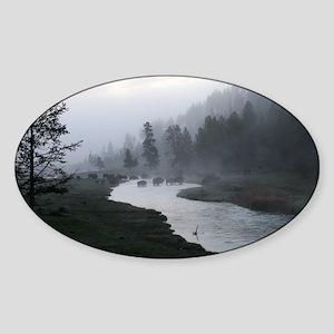 Bison crossing Sticker (Oval)