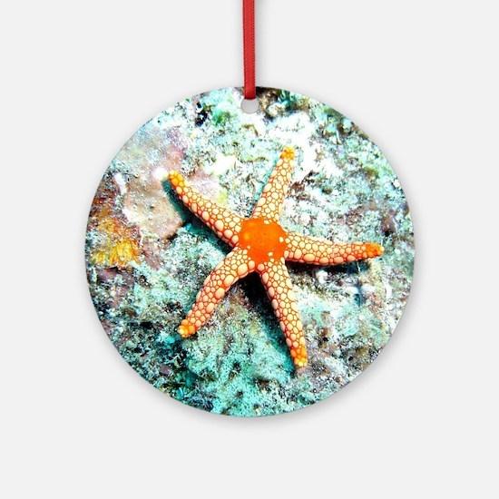 Pretty Starfish Round Ornament