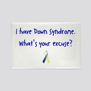 DS What's Your Excuse Ribbon Rectangle Magnet