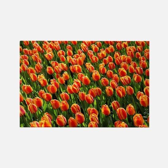 Unique Tulip garden Rectangle Magnet
