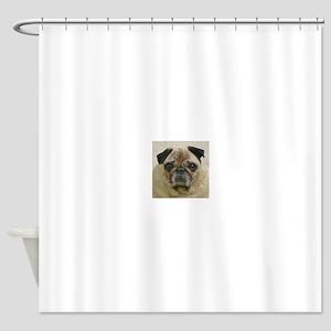 Pug headstudy Shower Curtain