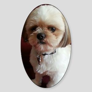 Rescue pup Sticker (Oval)