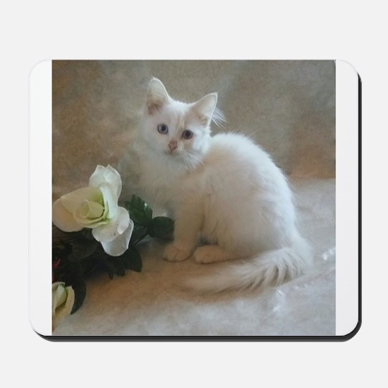 cute siberian colorpoint white kitten Mousepad
