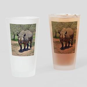 Rhinoceros Drinking Glass