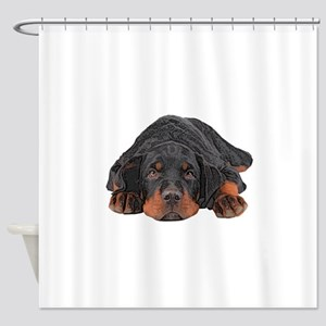 Colored Pencil Drawing Rotweiler Pu Shower Curtain