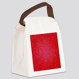 Red/pink color stained glass patt Canvas Lunch Bag