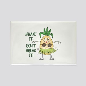Shake It Magnets