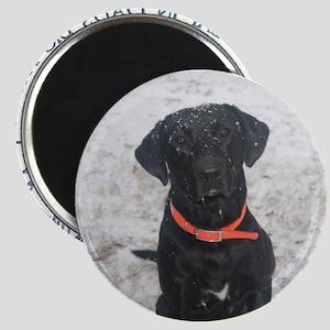 Black Labrador Retriever Big Truck Magnet