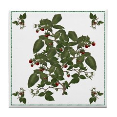 Raspberries Tile Coaster