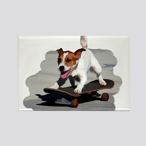 Jack Russel Terrier on Skateboard Magnets
