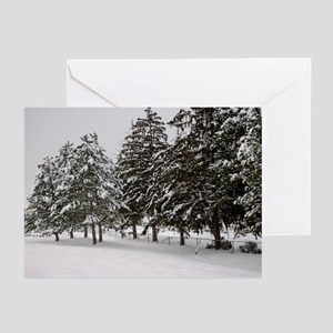Snow Trees Christmas Cards (Pk of 10)