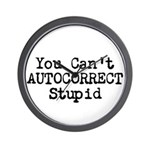 You Cant AUTOCORRECT Stupid Wall Clock