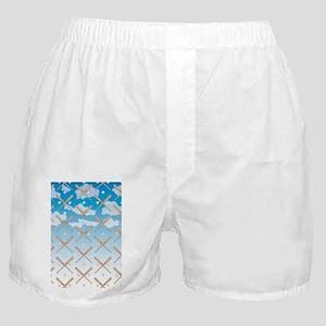 Cloudy Baseball Boxer Shorts