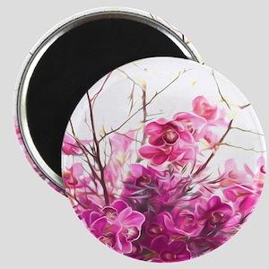Serene Pink Phalaenopsis Orchids Magnets