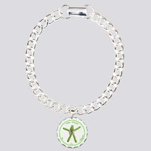 The Truth Is In There Charm Bracelet, One Charm