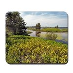 Seney Wildlife Refuge Mousepad