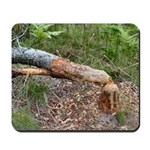 Beaver Work Mousepad