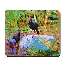 3 Wild Turkeys photo art Mousepad
