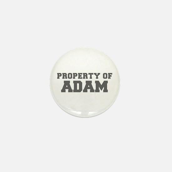PROPERTY OF ADAM-Fre gray 600 Mini Button