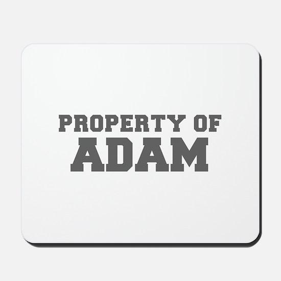 PROPERTY OF ADAM-Fre gray 600 Mousepad