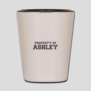 PROPERTY OF ASHLEY-Fre gray 600 Shot Glass