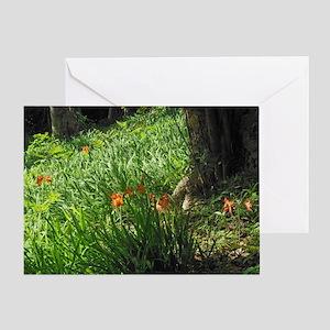 Wild Amaryllis Greeting Card