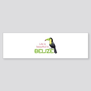 TOUCAN LIFE IN BELIZE Bumper Sticker