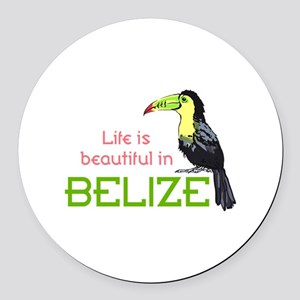 TOUCAN LIFE IN BELIZE Round Car Magnet