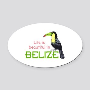 TOUCAN LIFE IN BELIZE Oval Car Magnet