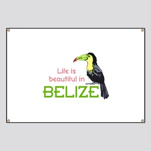 TOUCAN LIFE IN BELIZE Banner