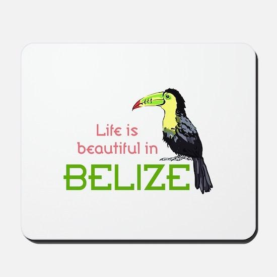TOUCAN LIFE IN BELIZE Mousepad