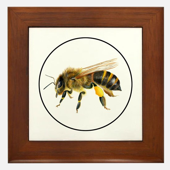 Honey bee watercolour / watercolor painting Framed