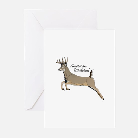 AMERICAN WHIITETAIL Greeting Cards