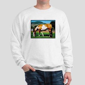 Buckskin Overo Paint Horse Sweatshirt