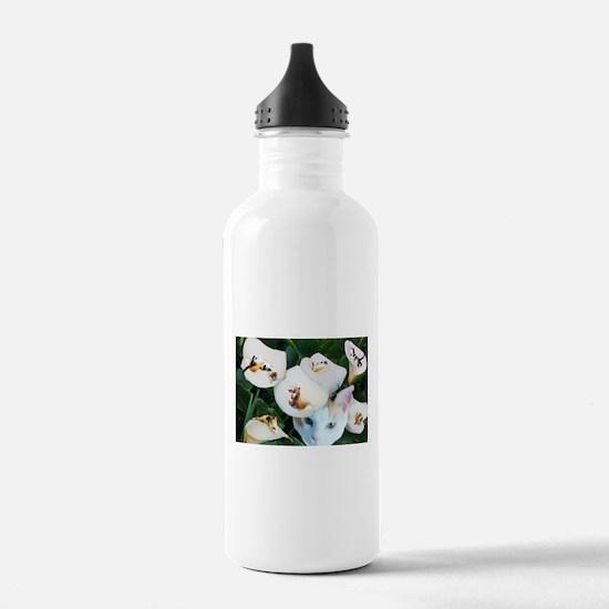 Cala in Callas.png Water Bottle