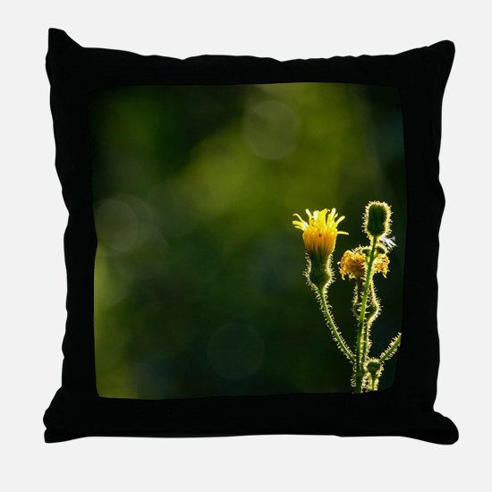 Funny Backlit Throw Pillow