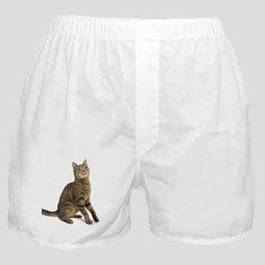 cat tabby Boxer Shorts