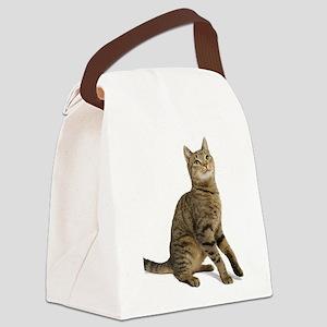 cat tabby Canvas Lunch Bag