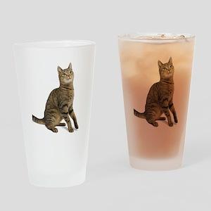 cat tabby Drinking Glass