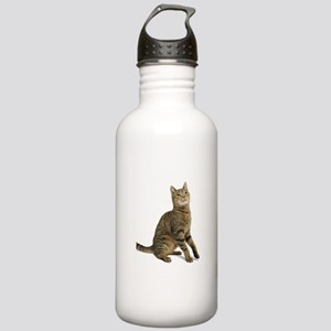 cat tabby Water Bottle