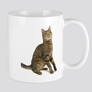 cat tabby Mugs