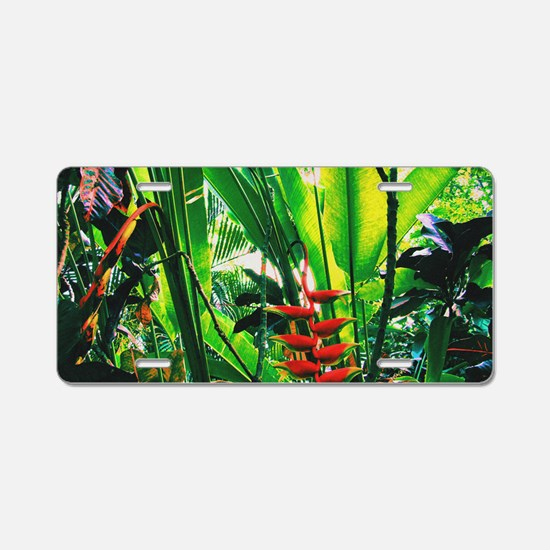 Tropical Aluminum License Plate