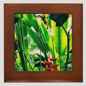 Tropical Framed Tile