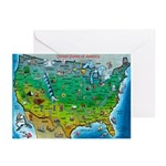 USA Cartoon Map Greeting Cards (Pk of 20)