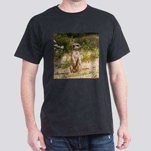 Meerkat_2014_0901 T-Shirt