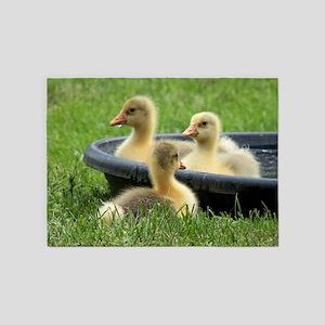 Three little goslings wildlife in t 5'x7'Area Rug
