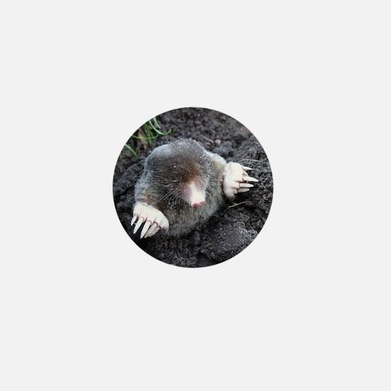Adorable Mole in Dirt Mini Button